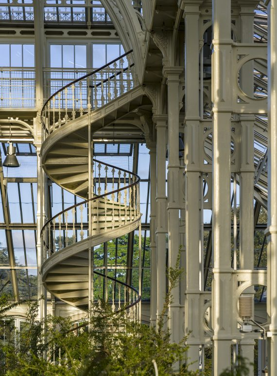 Temperate House interior staircase
